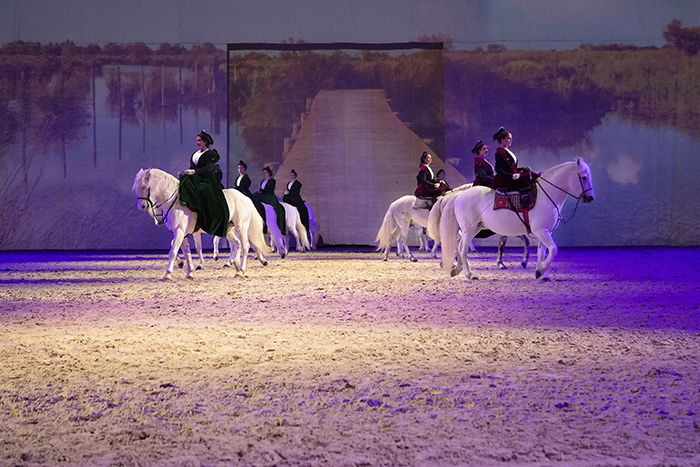 Spectacle Gala-des-crinieres-d'or - Photo F. Galeron